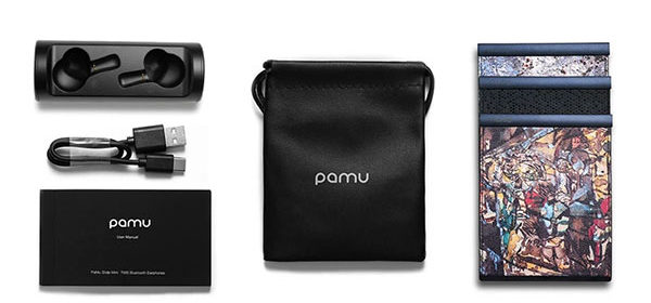 Charging Case Adapt to PaMu Earbuds